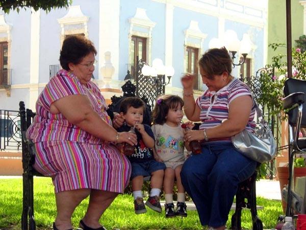 RELACIÓN ENTRE EL PESO Y LA FAMILIA